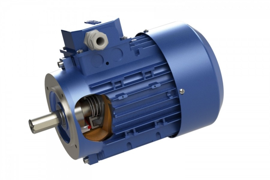 Electric motors with rotor brake
